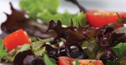Golden Glow Plated Menu Salad Dish